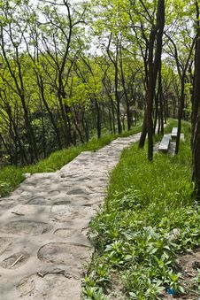 Free Hiking Trail Royalty Free Stock Photo - 15922615