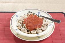 Free Orecchiette Pasta With Tomato Sauce Royalty Free Stock Photos - 15923318