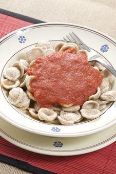 Free Orecchiette Pasta With Tomato Sauce Royalty Free Stock Image - 15923436