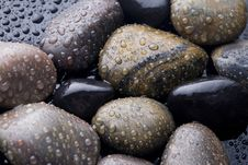 Free Stones Covered With Water Drops. Stock Photo - 15924370