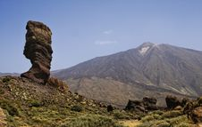 Free Rock Tree And View On Teide, Tenerife, Spain. Stock Image - 15924391