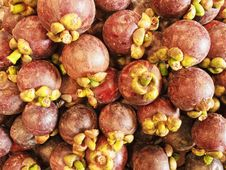 Free Mangosteen Stock Photography - 15925312
