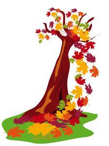 Free Autumn Tree Royalty Free Stock Photography - 15926697