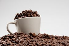 Free Cup Of Coffee Beans Stock Photo - 15929210