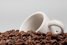 Free White Cup In Coffee Beans Stock Photography - 15929282