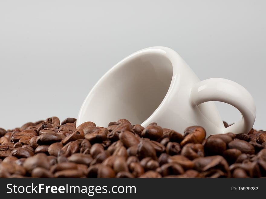 White cup in coffee beans