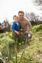 Free Father And Son On Easter Egg Hunt In Field Royalty Free Stock Image - 15934416