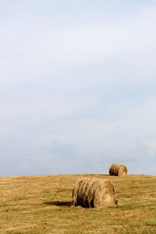 Free Hay In Field Royalty Free Stock Photo - 15930545
