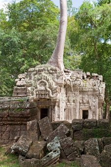 Free Ta Prohm In Angkor Royalty Free Stock Photos - 15930678