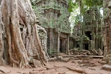 Free Ta Prohm In Angkor Royalty Free Stock Photos - 15930718