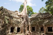 Free Ta Prohm In Angkor Stock Photo - 15930740