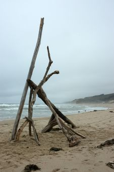 Free Beach Driftwood Stock Photography - 15933892
