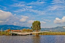 Free Lake Of Massaciuccoli Stock Images - 15934004