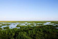 Free Landscape Of Swamp, Thailand Stock Photos - 15935353