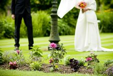 Free Bride And Groom Standing In The Park Royalty Free Stock Photo - 15938225