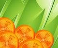 Free Orange Slices Stock Photo - 15949920