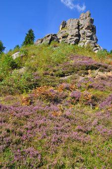 Free Rocks Under The Dark Blue Sky Royalty Free Stock Image - 15942576