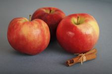 Tree Red Apples And The Cinnamon Royalty Free Stock Photography