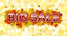 Free Vector Autumn Big Sale Royalty Free Stock Photos - 15944798