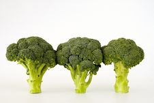 Free Fresh Sprouting Broccoli Royalty Free Stock Image - 15945076