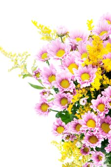 Free Flowers Stock Images - 15946834