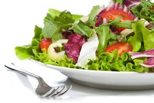 Free Salad With Vegetables Royalty Free Stock Photos - 15947188