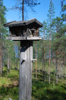 Free Wooden Rack For Wild Birds In Finnish Forest Royalty Free Stock Photo - 15947915