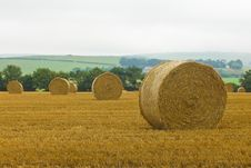 Free Straw Bales Royalty Free Stock Image - 15948516