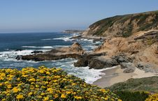 California Coastline Royalty Free Stock Images