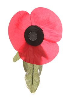 Remembrance Poppy Royalty Free Stock Photos