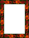 Free Fall Flowers Frame Or Border Stock Photo - 15950140