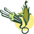 Free Corn Alternative Power Fuel Stock Photography - 15950982