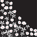 Free Floral Background Stock Images - 15954234