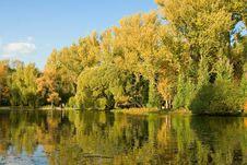 Free Autumnal Scene, Bank Of Lake Royalty Free Stock Image - 15953226