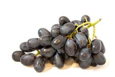 Free Syrah Grapes Royalty Free Stock Photo - 15953325