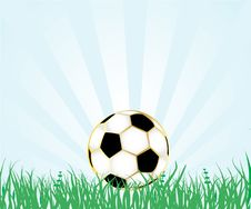 Free Soccer Ball On The Fresh Green Grass Royalty Free Stock Image - 15953996
