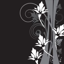 Free Floral Background Royalty Free Stock Photography - 15954557