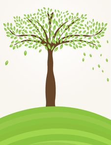 Free Tree On The Green Hill Stock Photo - 15954730