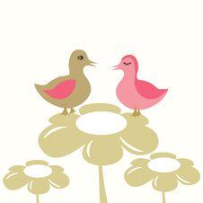 Free Ducks Couple In Love. Stock Photo - 15954910