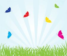 Free Floral Card With Butterfly Stock Image - 15954911