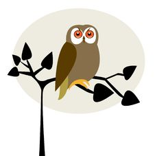 Free Cute Owl On The Tree Royalty Free Stock Photo - 15954925