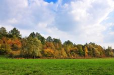 Free Autumn Royalty Free Stock Photos - 15954988