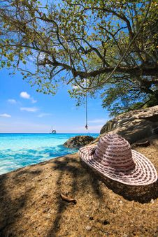 Free Straw Hat And Tree Royalty Free Stock Photos - 15957518
