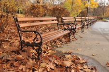 Free Park In Autumn Stock Image - 15959951