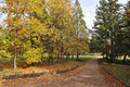 Free Park In Autumn Stock Images - 15960074