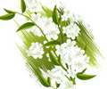 Free Blossoms Illustration Stock Photos - 15967443
