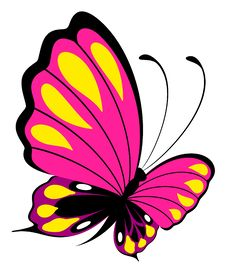 Free Beautiful Butterfly Royalty Free Stock Photography - 15961577