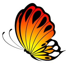 Free Beautiful Butterfly Royalty Free Stock Image - 15961596