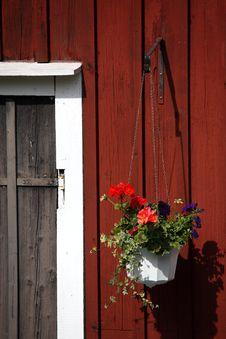 Free Flower Stock Image - 15962301