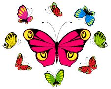 Free Beautiful Butterfly Royalty Free Stock Photos - 15962308